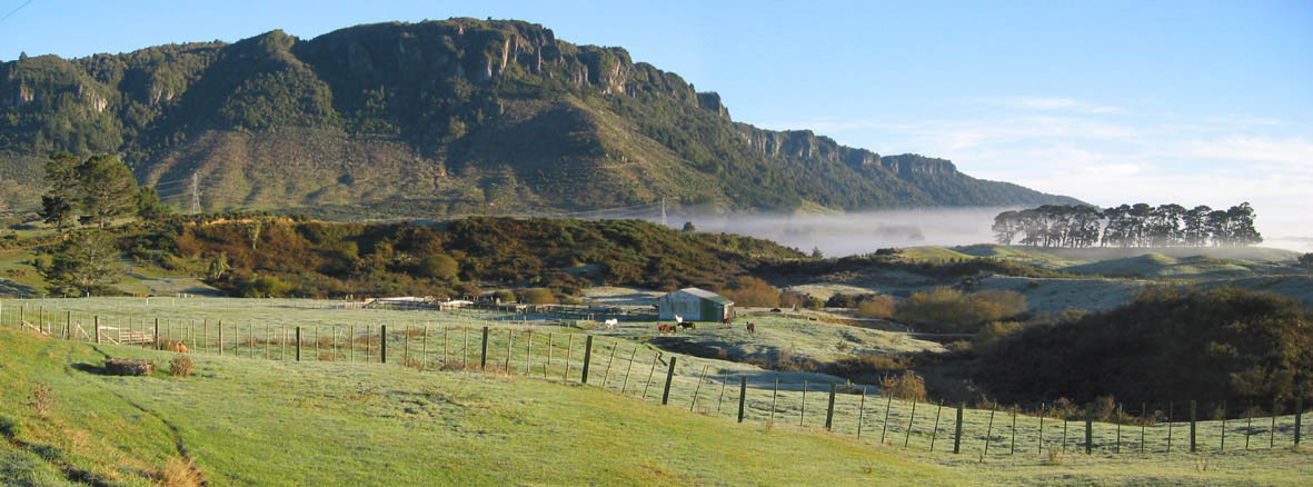 Horohoro_Reduced_More